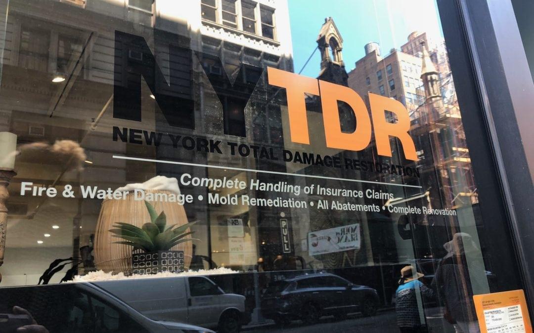 NYTDR Intro Blog Post